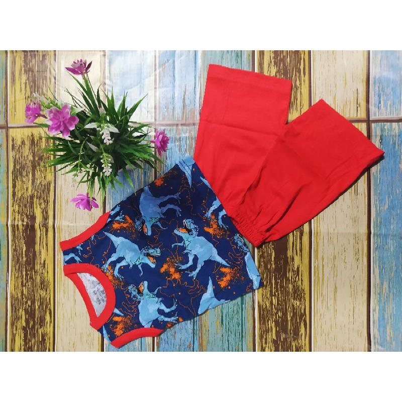 Tshirt Set budak Dinosaur Singlet set / Sleeveless Tee Dinosaur Shirt <NHSTORE