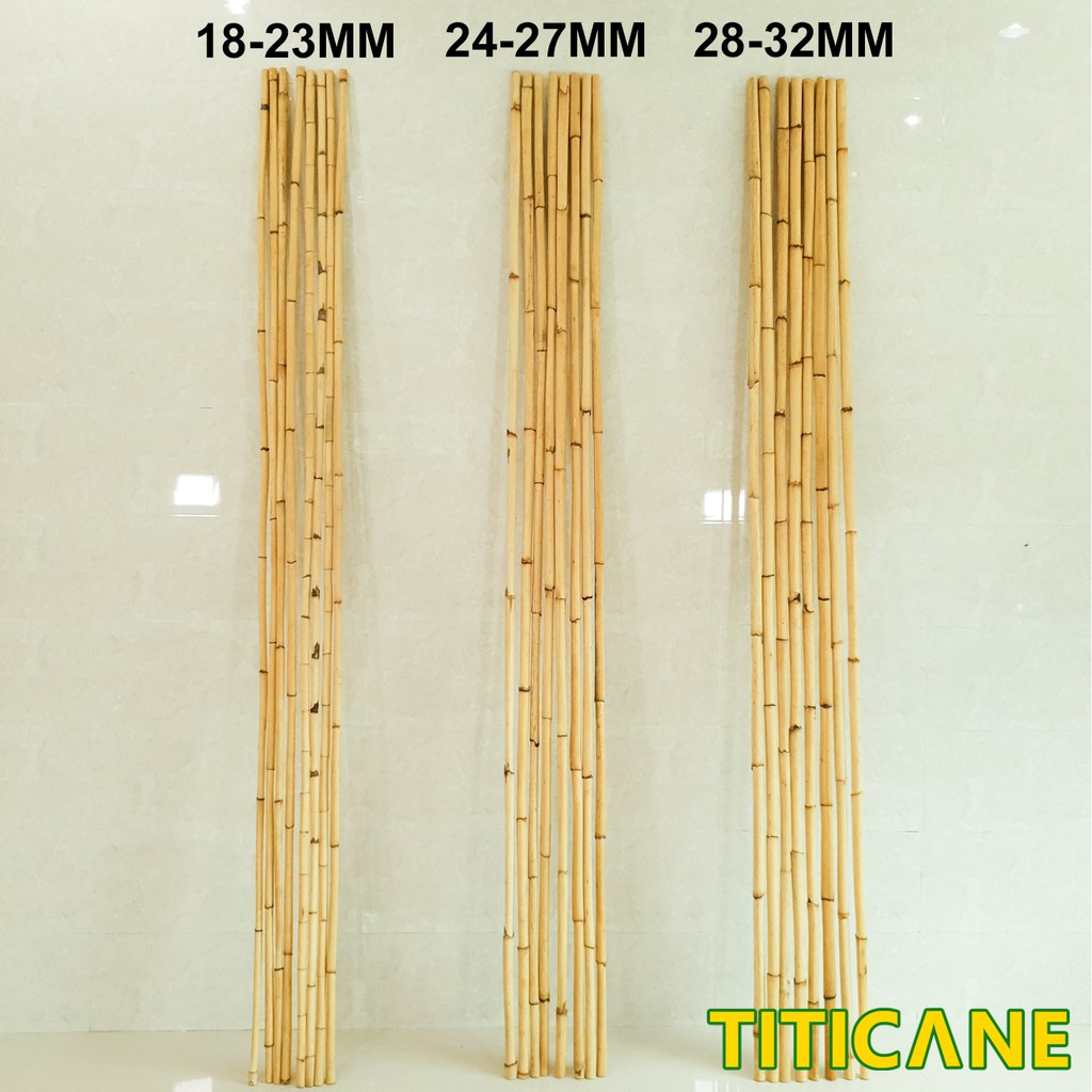 Mantang Natural 1st Quality [ 9 Feet ] [ Rattan / Rotan ]