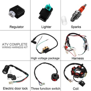 6 Coil Wiring Harness Atv. . Wiring Diagram Hamsar Wire Harness No on