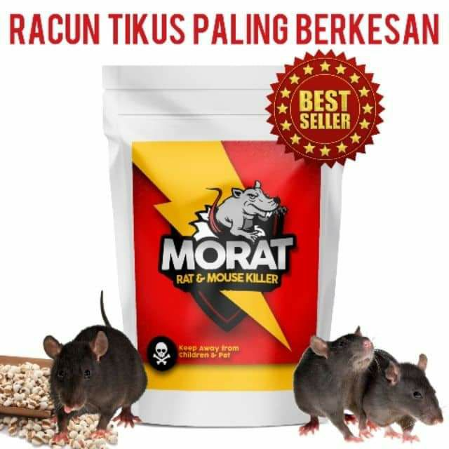 MORAT 🐭 RACUN TIKUS POWER NO 1 🌟🌟🌟🌟🌟