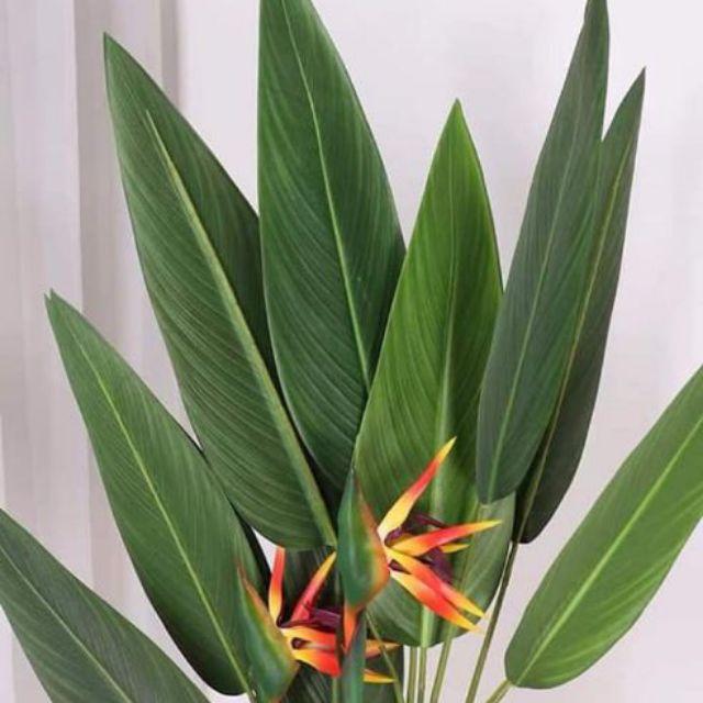 [PREMIUM] SYAQIST SKYBIRD ARTIFICIAL PLANT . READY STOCK . GRED PREMIUM A+ . DAUN TEBAL