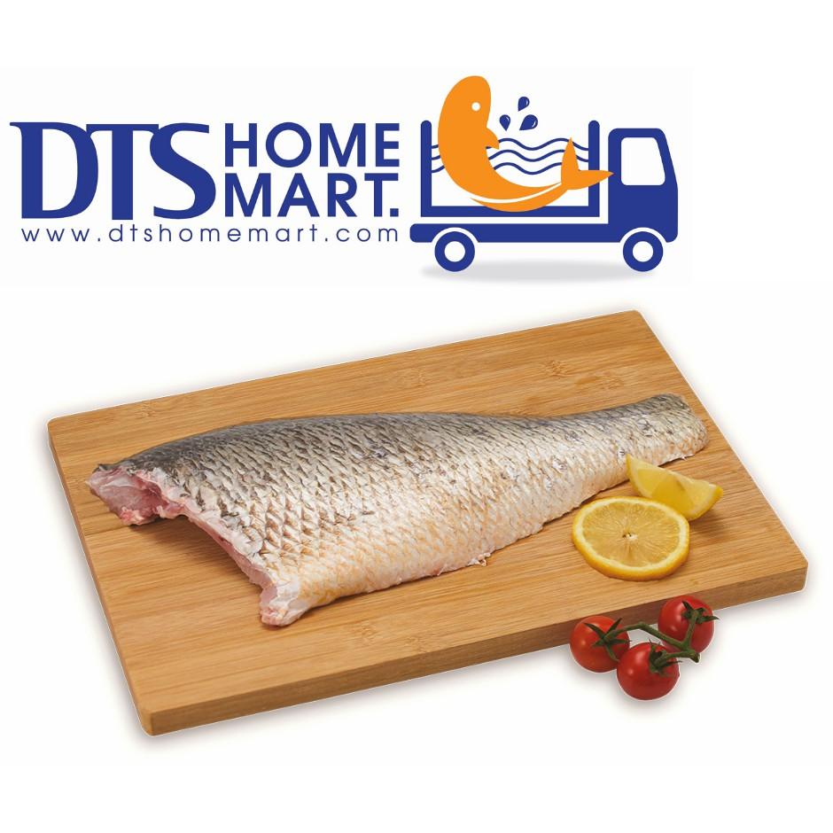 Golden Snapper Fish Fillet 500g 红枣鱼片