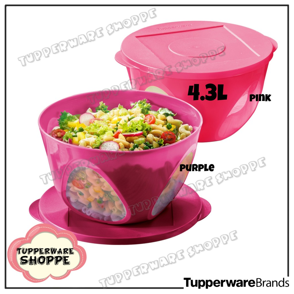 🔥READY STOCK🔥Outdoor Dining Bowl (1)