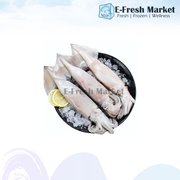 Whole Squids, 2kg (Penang Only)
