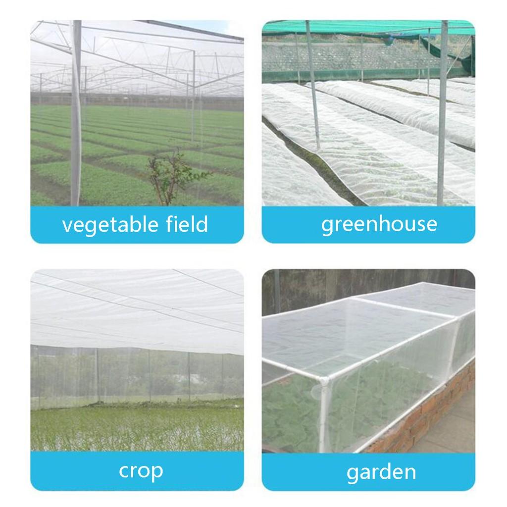10M//6M x 2.5M Garden Bird Net Netting Vegetables Pest Plant Crops Protect Mesh