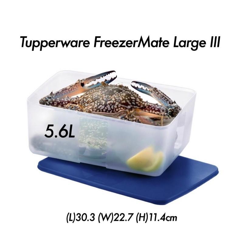 Tupperware FreezerMate Large III 5.6L(1pc)-Sheer Tokyo Blue