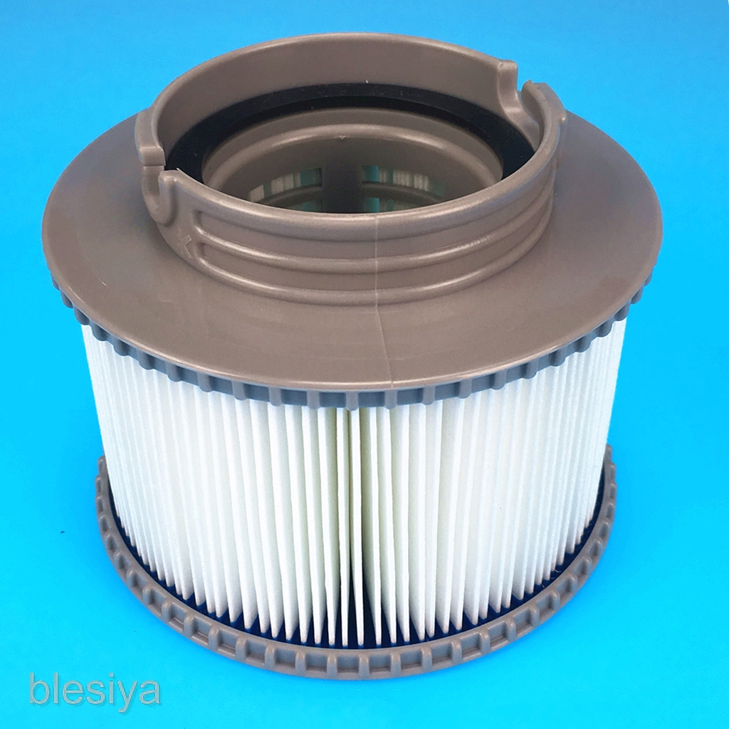 Swimming Pool Filter Cleaner, Water Filter Cartridges Strainer For All  Models Hot Tub Spas Swimming Pool Accessory