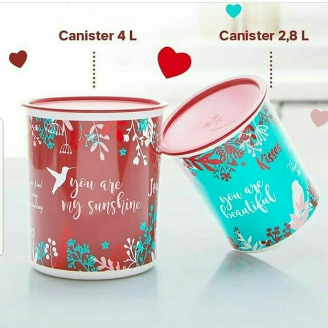 🔥🔥LIMITED OFFER🔥🔥TUPPERWARE Mother's Canister set of 2 (4L & 2.8L)