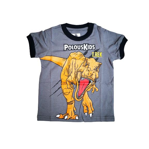 POLOUS  Boy Cotton Short Sleeve Round Neck Shirt 9007-TREX