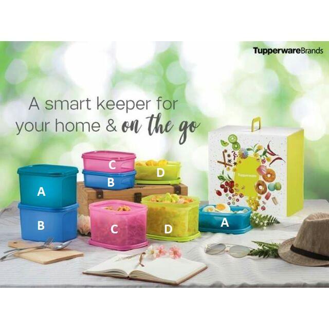 Tupperware Smart Keeper Gift Set Modular Mates Mini Rectangular 850ml and 1.9L