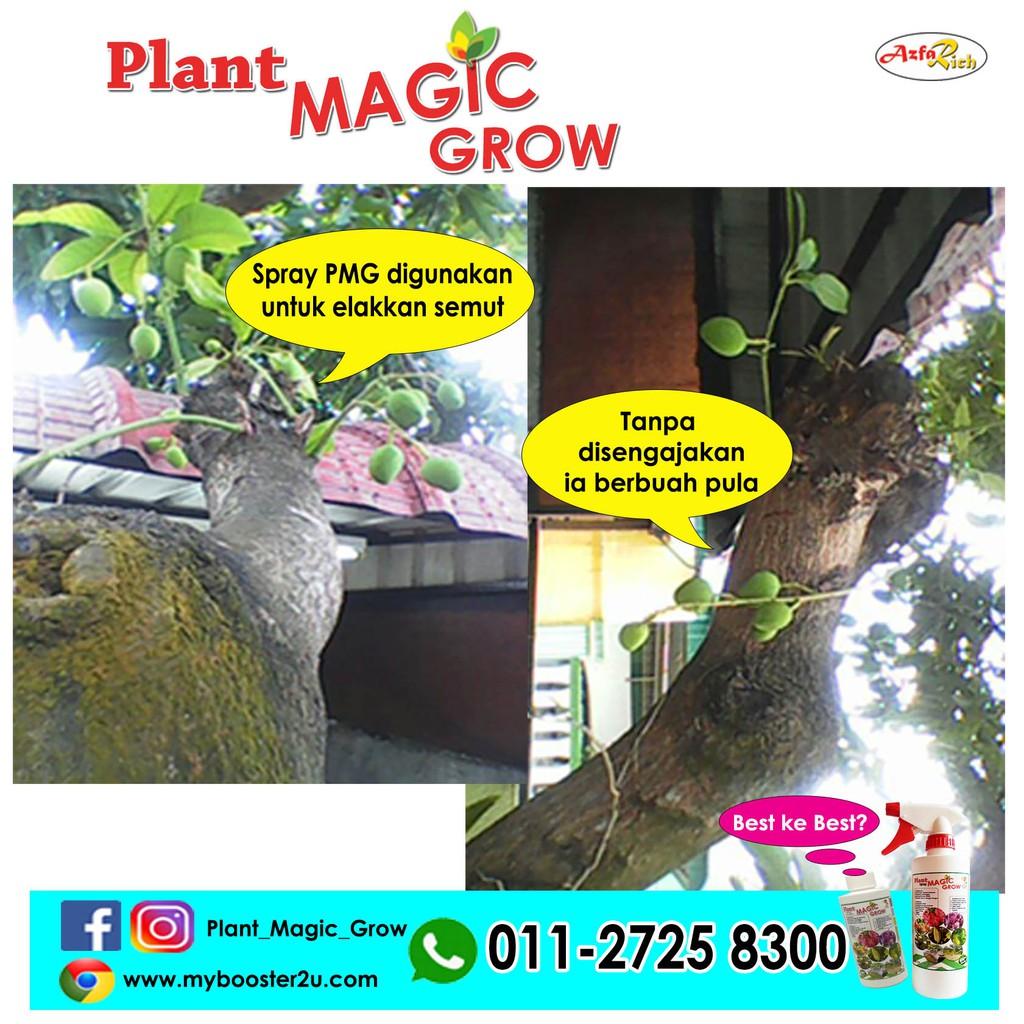 AzfaRich Plant Magic Grow Concentrated (Pati Baja Organik), 200ml