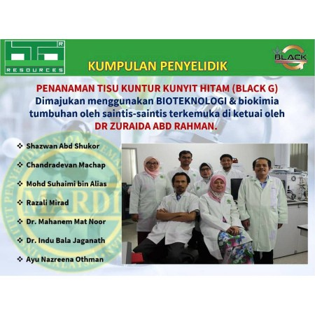 Black G Kunyit Hitam 30 Kapsul Original
