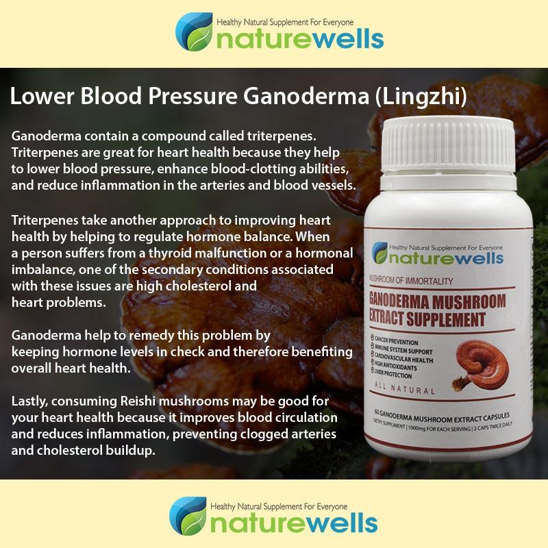 Naturewells Ganoderma Mushroom (LingZhi) Extract Supplement