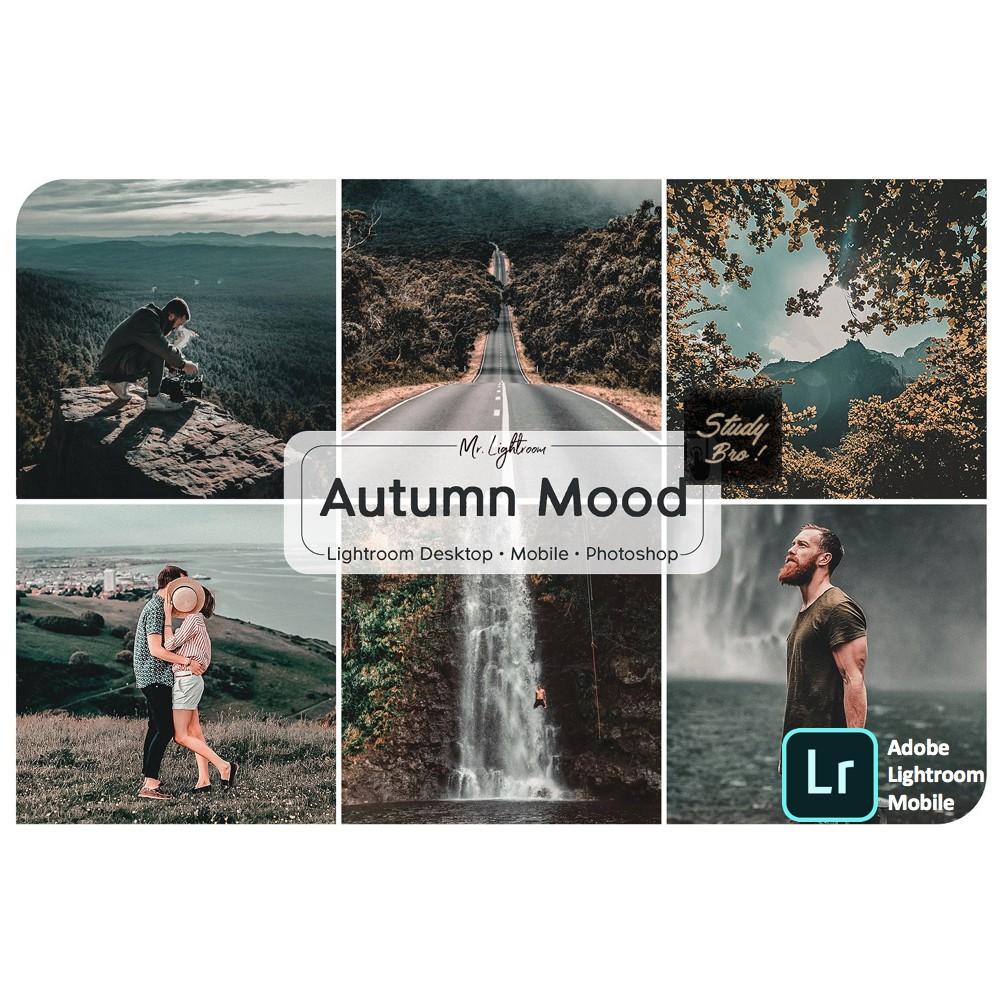 Autumn Mood | Adobe Lightroom Preset [ IOS/ ANDROID/PC/MAC ]