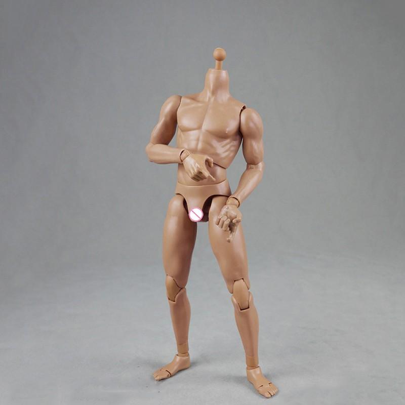Skin color 2.0 Version BD003 25cm COOMODEL COO Standard Male Muscle Body