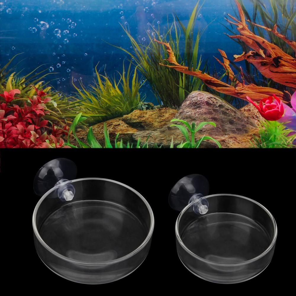 Clear Glass Shrimp Food Round Dishes Small Fish Feeding Bowl Ornamental Supplies