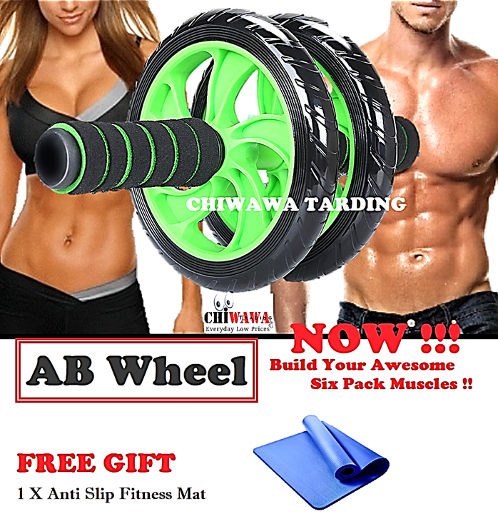 FREE GIFT + Double Wheels Ab Roller Abdominal wheel ABS Fitness Gym Yoga Mat