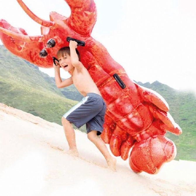 INTEX Inflatable Summer Lobster Ride On Pool Float Swimming Pool Swimming Ring Swimming Float Baby Kids Pelampung Duduk