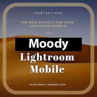 Monochrome Potrait | Lightroom Preset | Shopee Malaysia