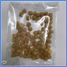 【Chinese】100gram Big Dried Scallop 400 中国干贝400头