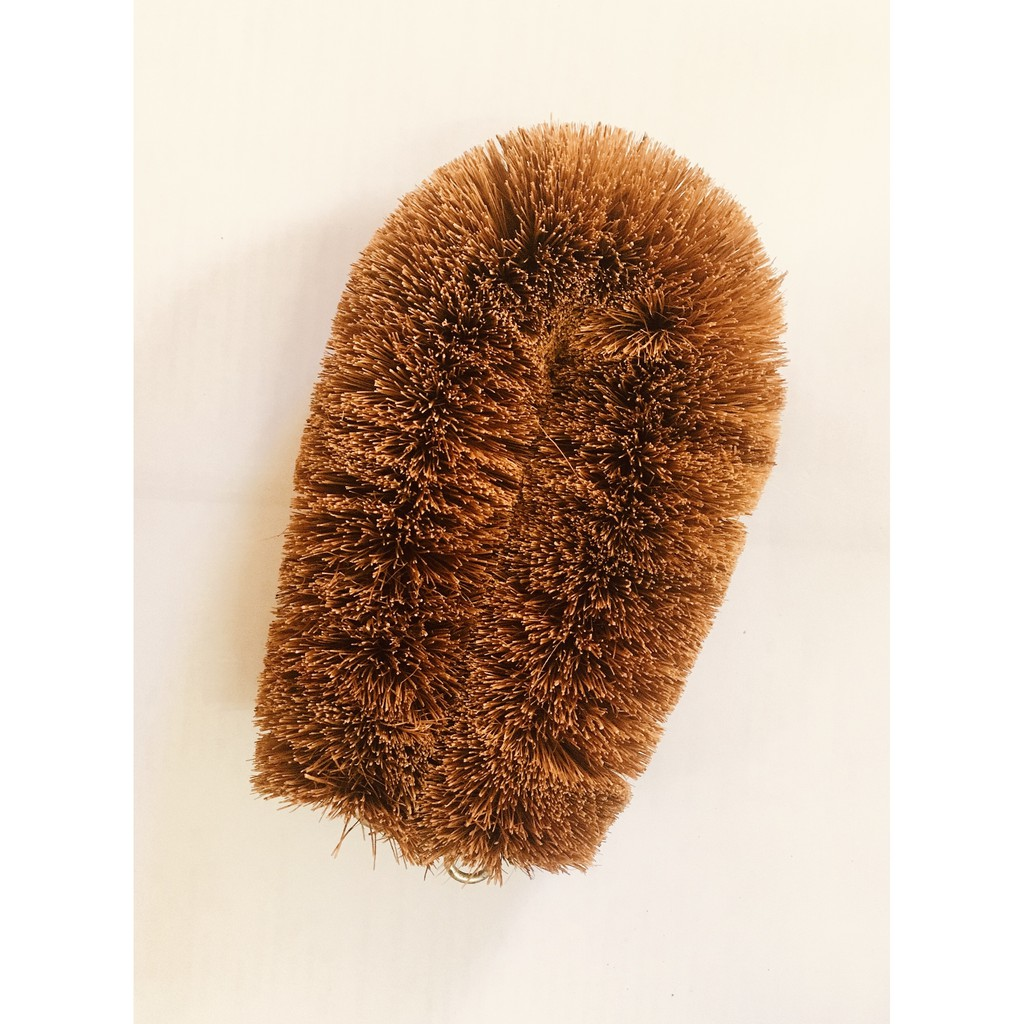 """Coconut Abalone Brush Natural Coconut Fibres Scrubbing Brush With Eyelet For Hanging Up 5"""" x 3"""""""