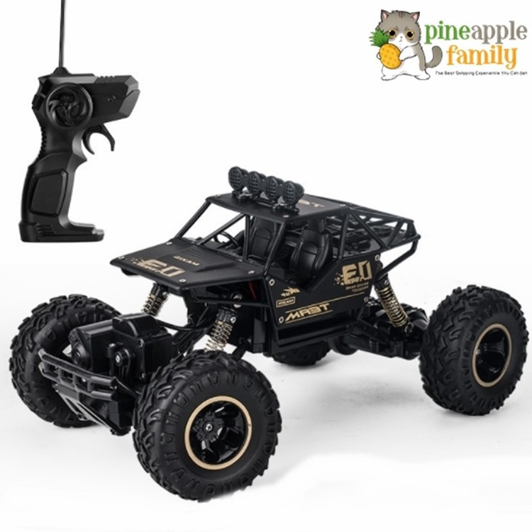The spot! EcoSport High quality RC Car 1/16 Scale Remote Control toys 4  Wheel Drive Rock