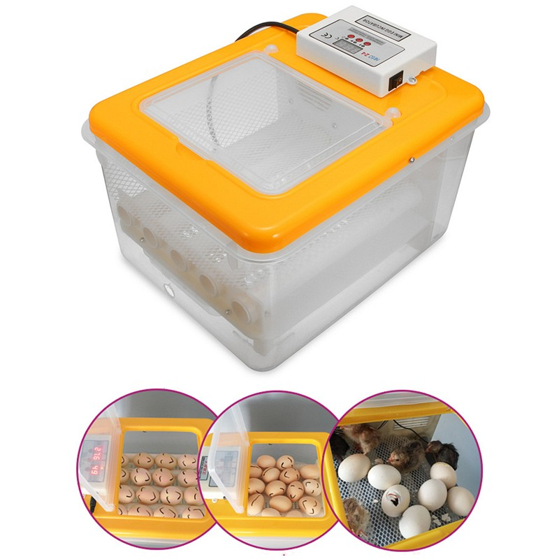 Details about  12 Digital Egg Incubator Hatcher Temperature Control Automatic TO