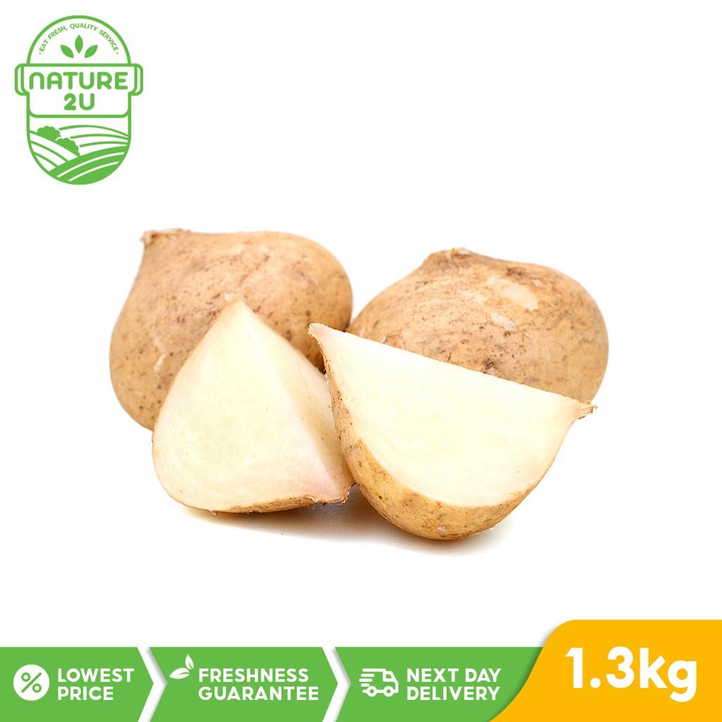 Fresh Vegetable - Sengkuang (1.3KG+-/PKT)
