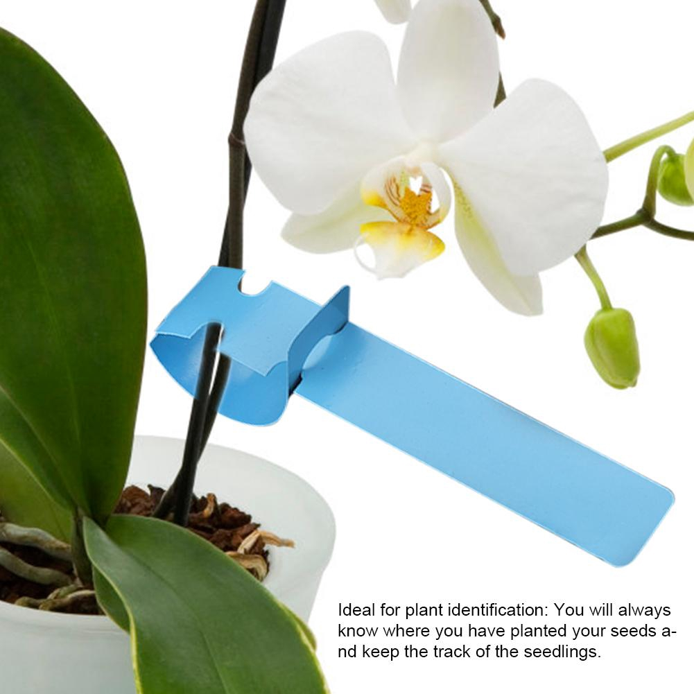 Blue Plant Labels 200pcs PVC Hanging Flower Plant Seed Name Tag Label Marker Sign Outdoor Labels for Plants