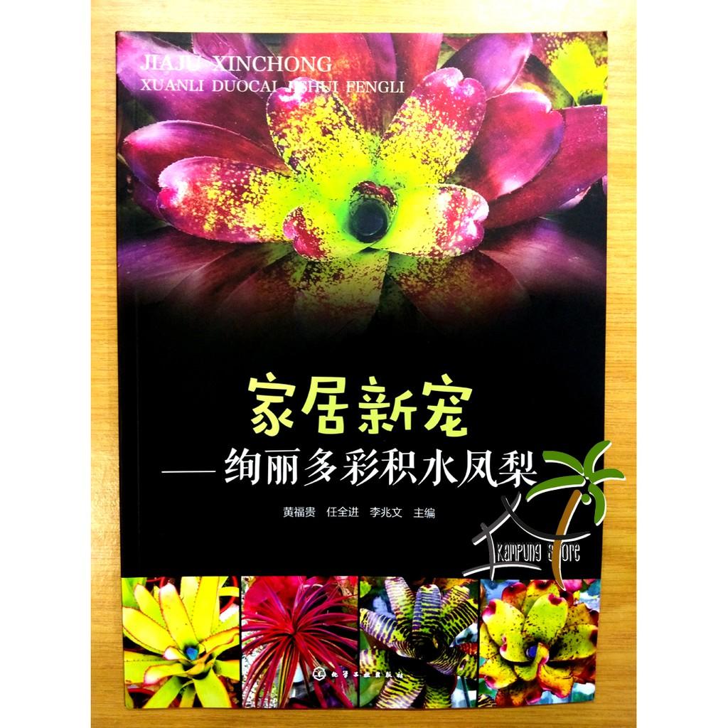 Book: 家居新宠——绚丽多彩积水凤梨 Bromeliad & Terrarium