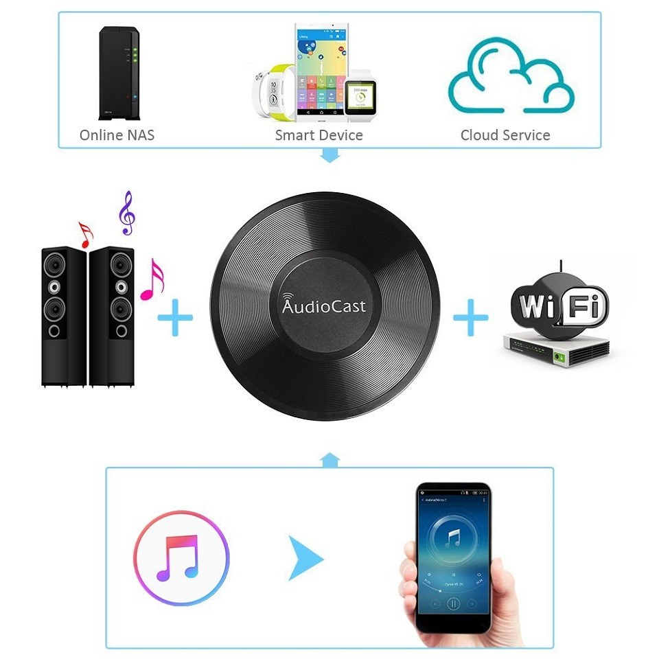 Audio Receiver Audiocast M5 DLNA Airplay for Spotify
