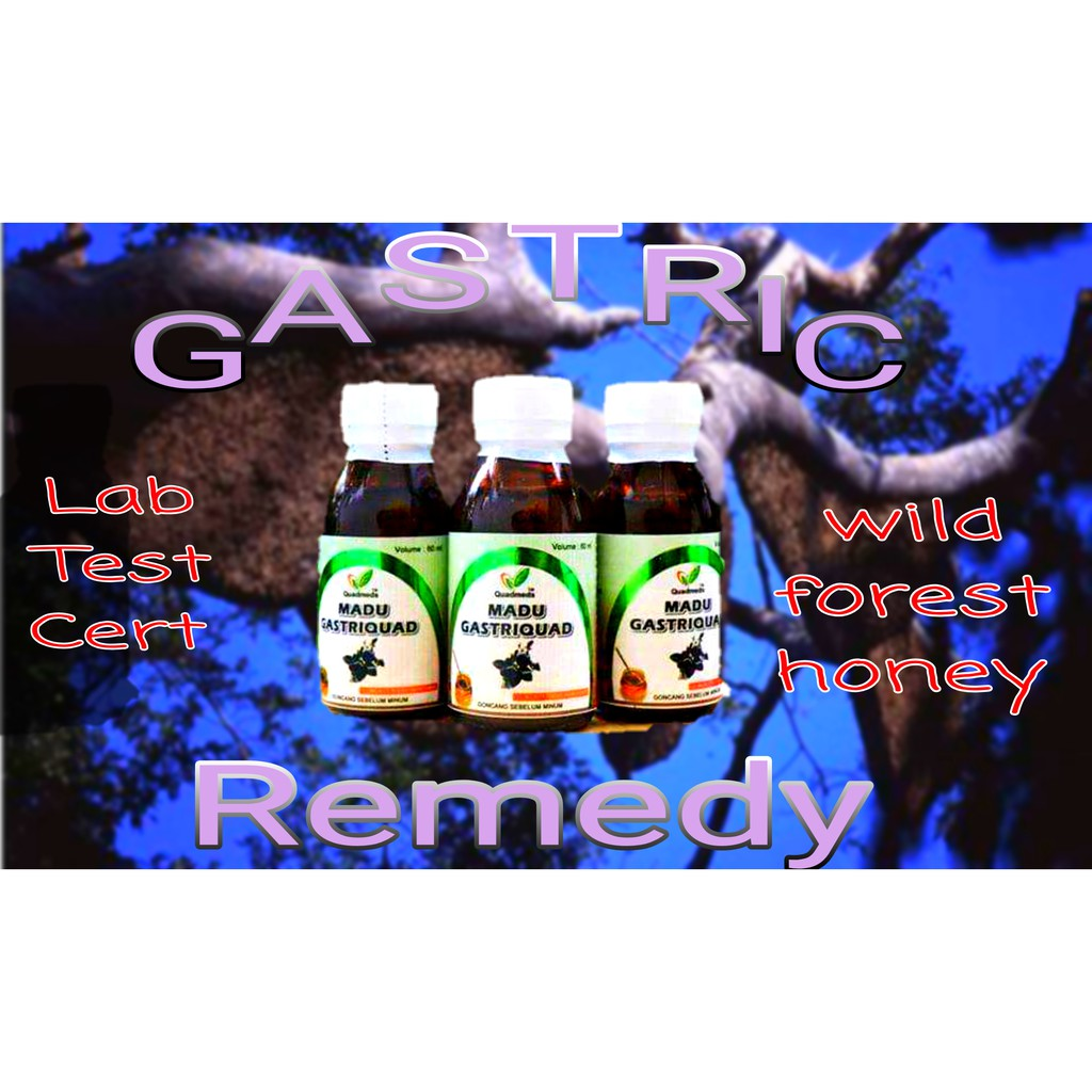 Gastric Remedy Wild Forest Honey 300ml