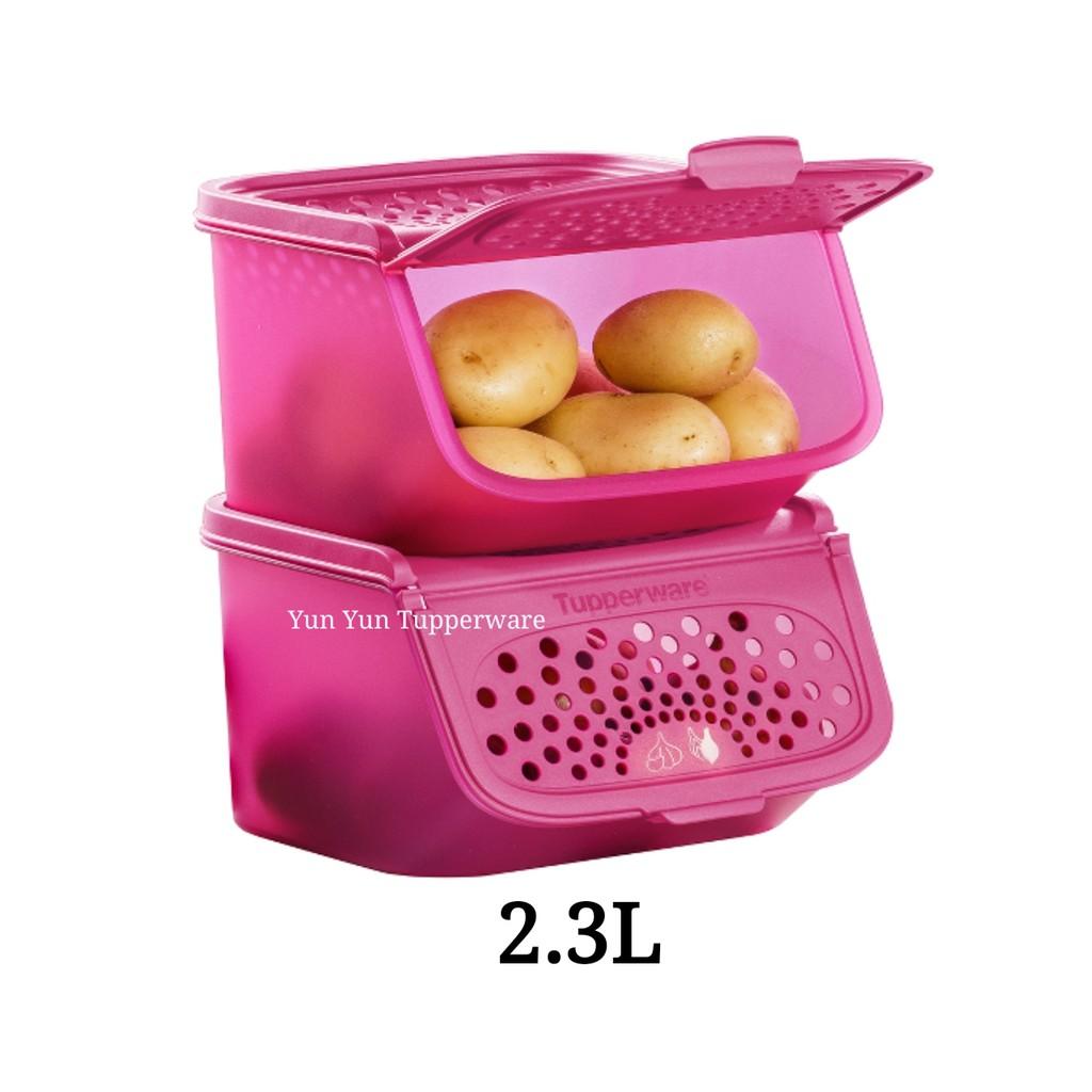 SALES Tupperwarep Garlic N All Keeper Set (1 PC/2 PCS/3 PCS/ 4 PCS) 2.3L - Dark Pink