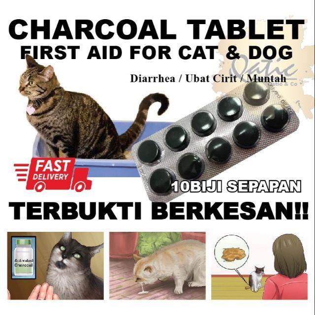 Ubat Cirit Birit Muntah Keracunan Diarrhea Kucing Anjing Shopee Malaysia