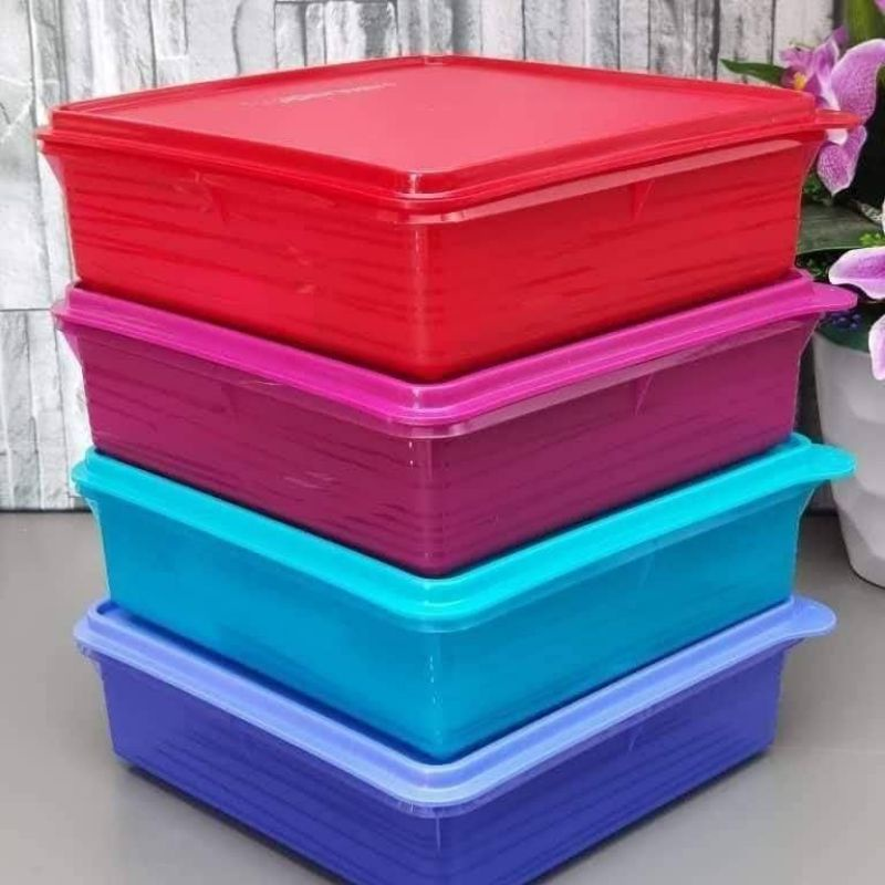 [1 PC HOT EXCLUSIVE] TUPPERWARE B2B & MOSAIC KEEPER SNACK STOR