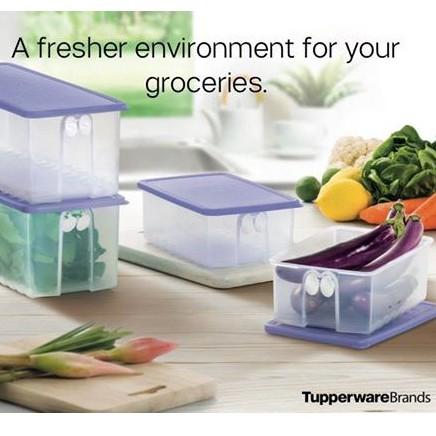 Fridge Solution by Fridge Smart Tupperware Original untuk simpan sayur dan buahan. FridgeSmart