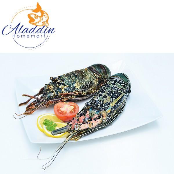 Lobster Tempatan (Sederhana) 400-600gm