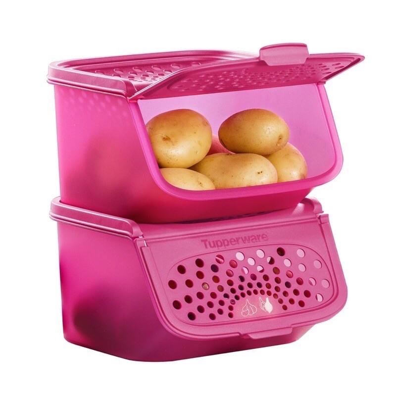 Ready Stock!Tupperware Garlic N All Keeper Set 2.3L/3.0L/5.5L (1 OR 2pcs) Vdh1