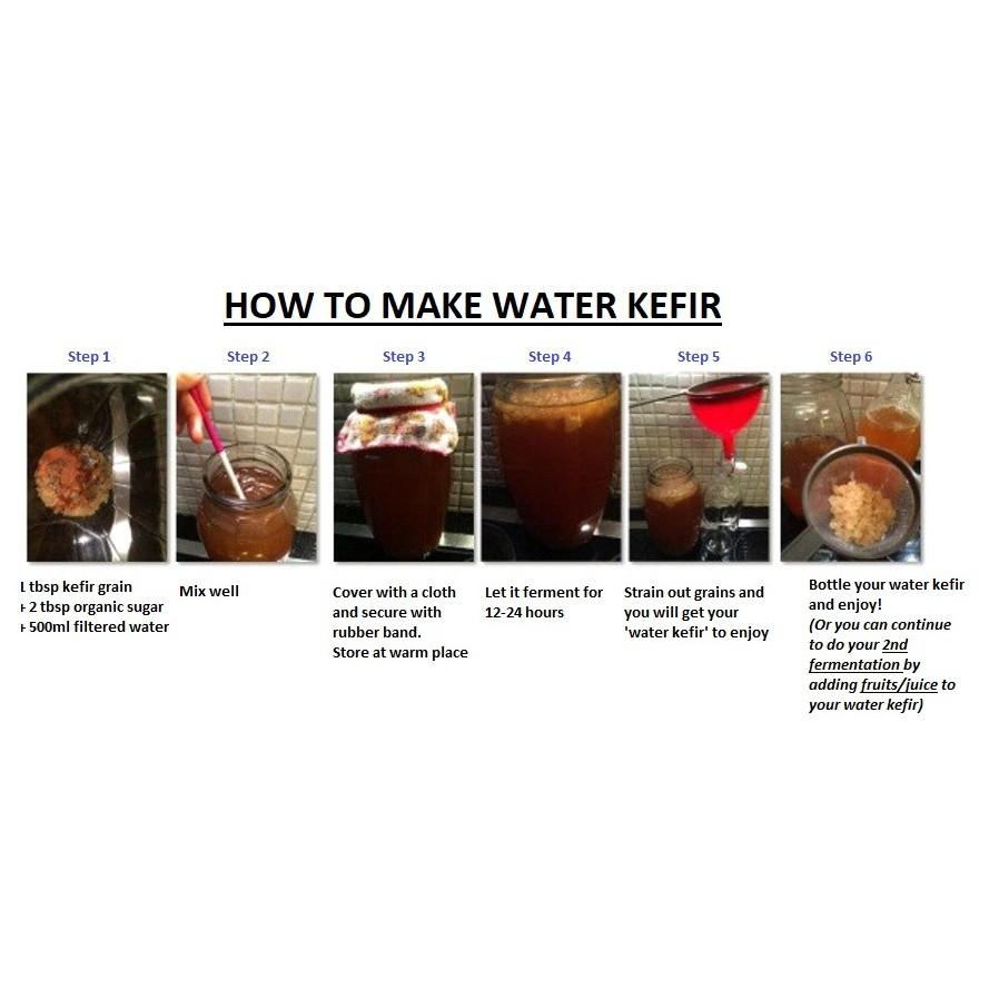 Active Live Probiotic Water Kefir Grain 1tbsp in Sugar Water