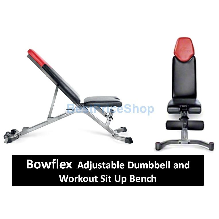 Fantastic Bowflex 5 1 Professional Dumbbell Sit Up Bench Weightlifting Chair Ocoug Best Dining Table And Chair Ideas Images Ocougorg