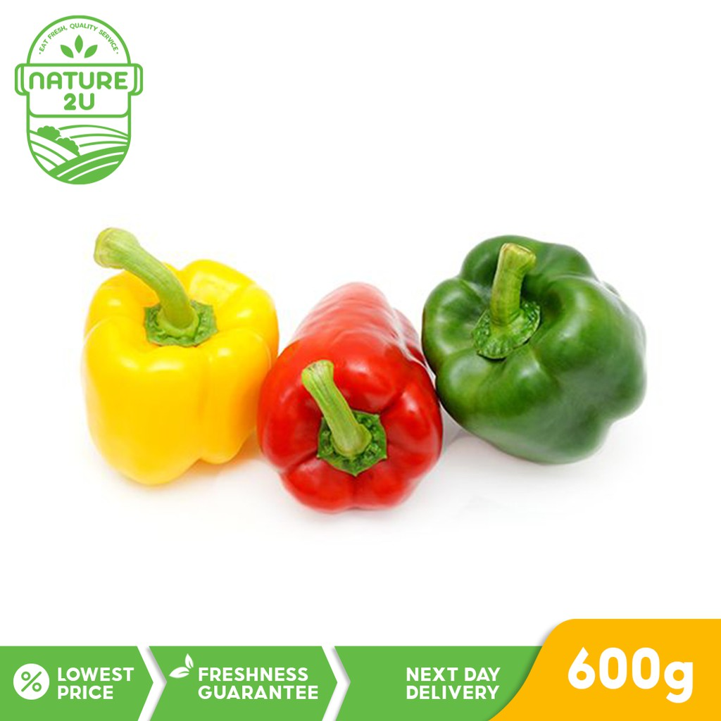Fresh Vegetables - Capsicum / Bell Peppers / Lada Besar Merah Kuning Hijau (Mix Colours) - 3pcs