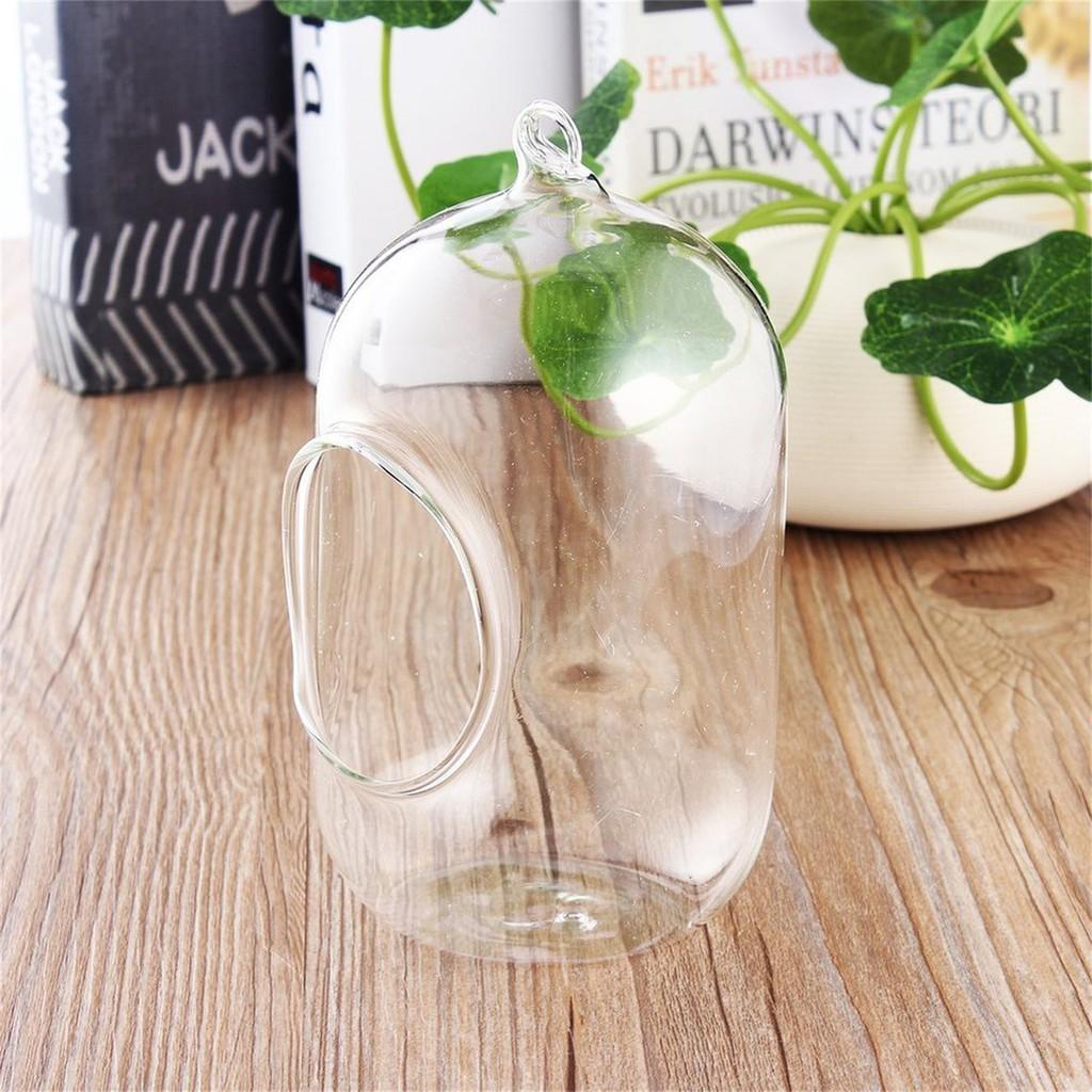 Glass Vase Hanging Terrarium Succulents Plant Landscape Home Decor Gift Shopee Malaysia