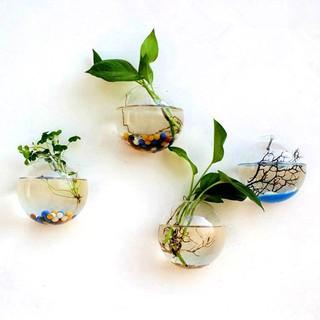 Adsorption on Aquarium Plant Cup Holder Transparent Pot Bowl Fish Tank Decor 1pc