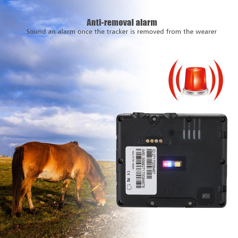IP66 Solar Power Pet GPS Tracker GSM GPRS Locator For Cow Horse Wifi Location