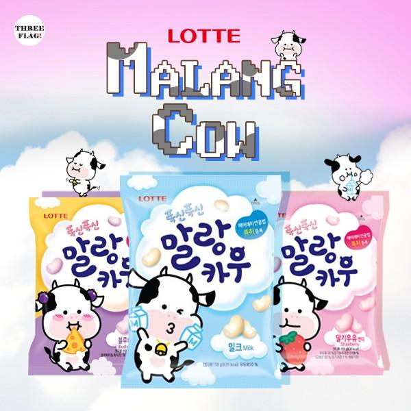 malang cow