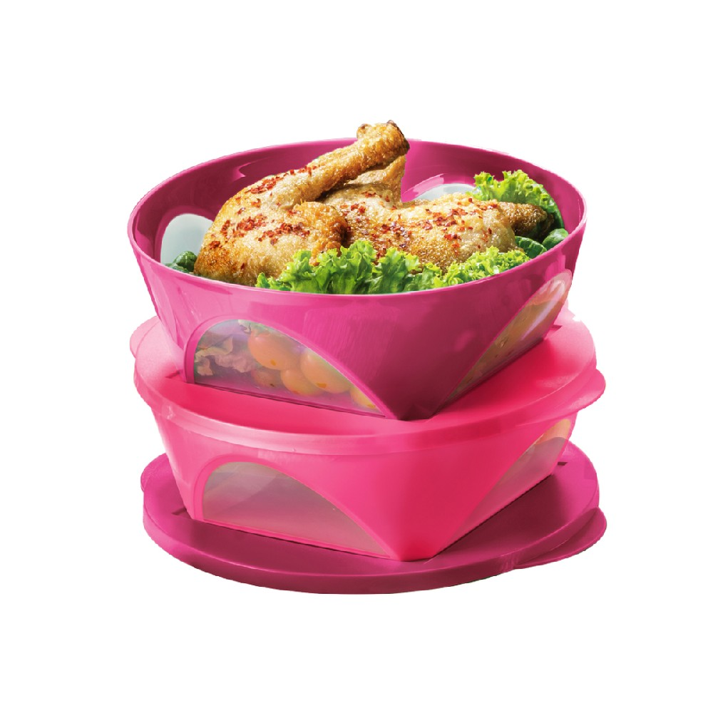 Tupperware Outdoor Dining Bowl (2) 2.5L