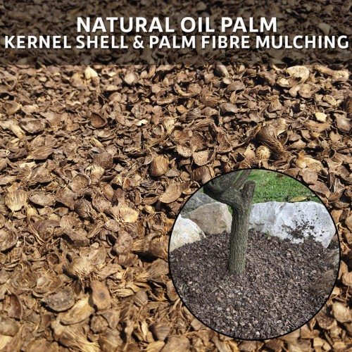 Natural Oil Palm Kernel Shell & Palm Fibre Mulching 10L (5KG)