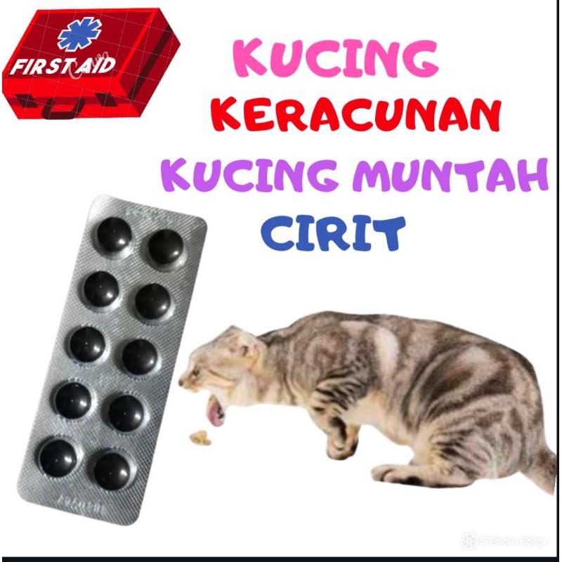Membantu Kucing Keracunan Muntah Cirit Shopee Malaysia