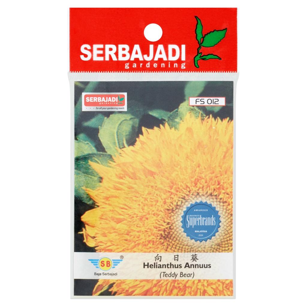 Serbajadi Helianthus Annuus (Teddy Bear) Seeds