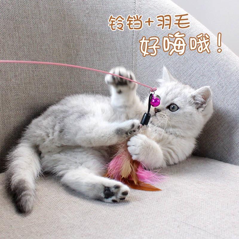 New Arrival Tongkat Kucing Lucu Funny Cat Stick Ready Stock Mainan Kucing Tongkat Kucing Lucu Dengan Dawai Keluli Keluli Bulu Mewah Haiwan Peliharaan Anak Kucing Anak Kucing Lucu Kucing Mainan Persediaan